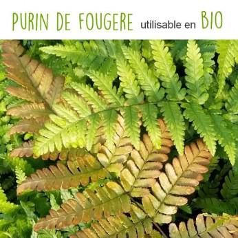Purin De Fougère
