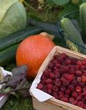 Fruitiers et potager