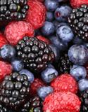 Fruitiers, Petits fruits