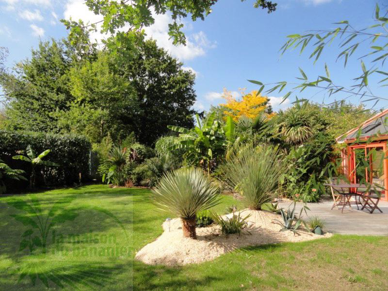 Bien aim amenagement jardin avec palmier gs45 montrealeast for Decoration jardin avec palmier